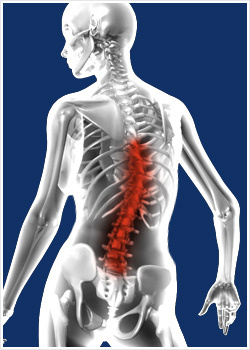 chiropractor rocky hill ct