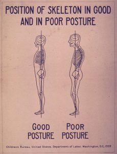 Dr. Allen Maryott Rocky Hill - Skeleton Posture