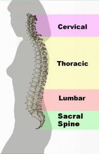 Dr. Allen Maryott Rocky Hill - Spine Problems